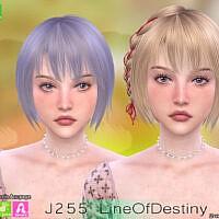 Line Of Destiny Hair J255