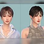 Female Hair G39 By Daisy-sims