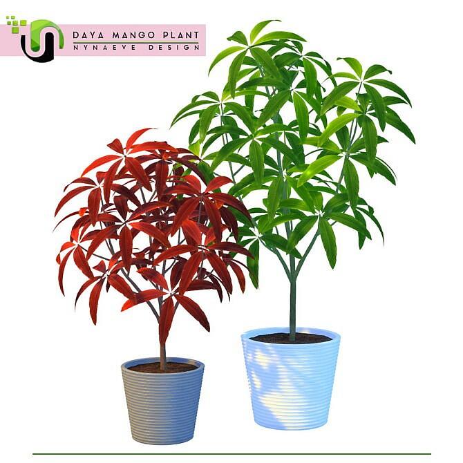 Sims 4 Daya Mango Plant at Nynaeve Design