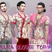 Sakura Blouse Top By Simmiev