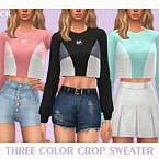 Three Color Crop Sweater By Black Lily