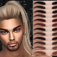 Eyebrows Z07 By Zenx