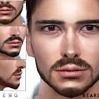 Beard N80 By Seleng