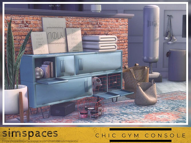 Chic Gym Console Set By Simspaces