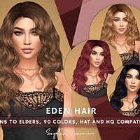 Eden Long Wavy Hair