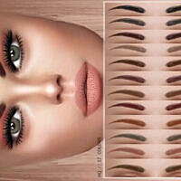 Eyebrows Z06 By Zenx
