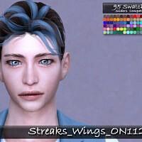 Streaks Wings Hair On1120 By Tatygagg
