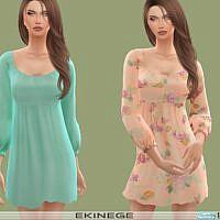 Scoop Neck Long Sleeve Mini Dress By Ekinege