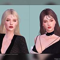 Female Hair G45 By Daisy-sims