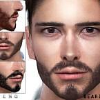 Beard N81 By Seleng