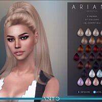 Ariana Hair By Anto