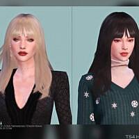 Female Hair G44 By Daisy-sims