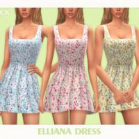 Elliana Dress By Black Lily