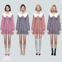 Frill Collar Mini Dress V2