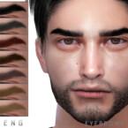 Eyebrows N117 By Seleng