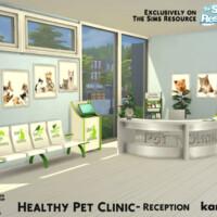 Healthy Pet Clinic Reception By Kardofe