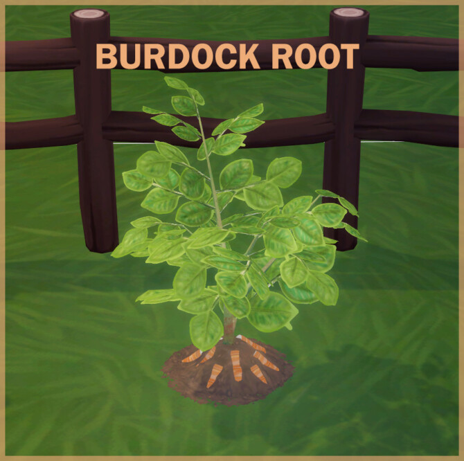 Sims 4 BURDOCK ROOT at Icemunmun