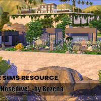 Nosedive Home By Bozena
