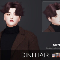 Dini Hair For Males By Nilyn