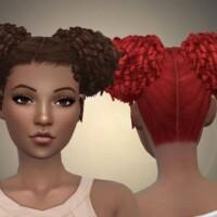 Afro Curls Hair
