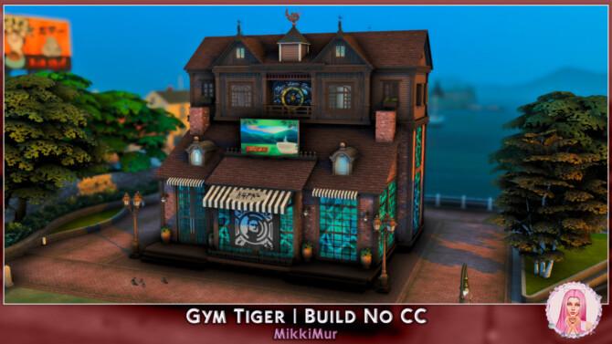 Sims 4 Gym Tiger at MikkiMur