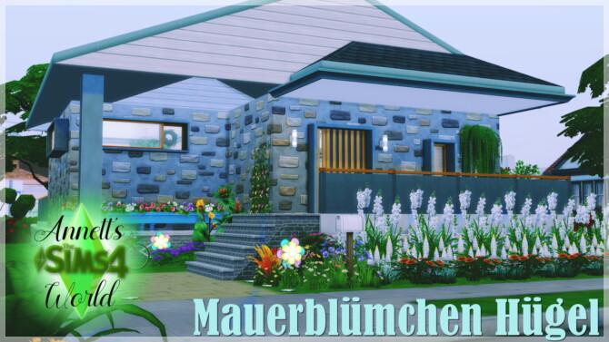 Wallflower Hill House