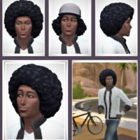 Groovie Bob Hair