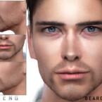 Beard N83 By Seleng