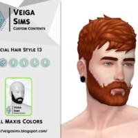 Facial Hair Style 13 By David_mtv