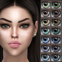 Eyecolors Z38 By Zenx