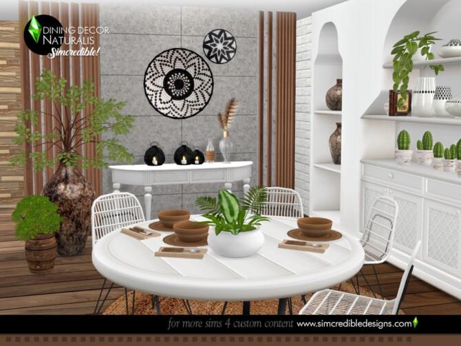 Sims 4 Naturalis Dining decor by SIMcredible at TSR