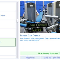 Fitness Gym Owner Career By Simsstories13