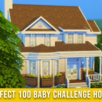 Perfect 100 Baby Challenge House By Springsims1
