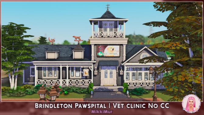 Brindleton Pawspital