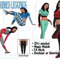 Sp11 Ribbed Leggings