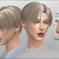 Male Nose Preset #3 By Coffeemoon