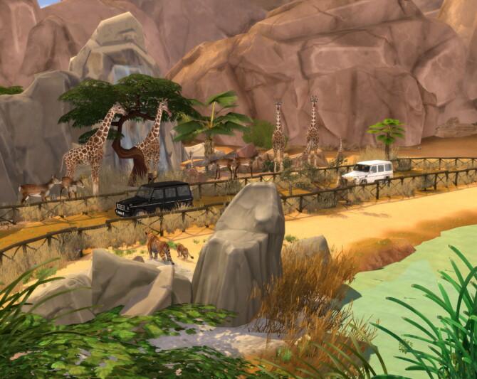 Sims 4 Go To Safari at Lily Sims